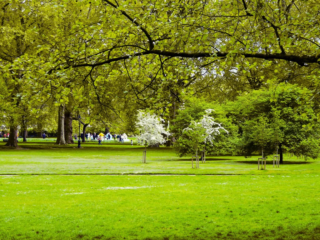 The Green Park Royal Park London Uk Contact Directory Uk